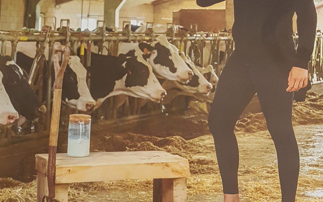 El Gobierno de Cantabria lanza una campaña para fomentar el consumo de la leche de Cantabria y reclamar un precio justo
